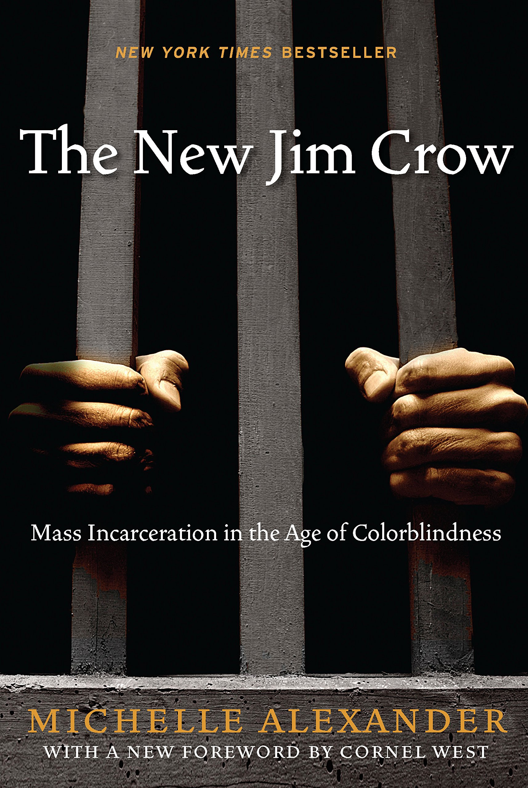 NYC Social Justice Book Club: The New Jim Crow by Michelle Alexander (POSTPONED)
