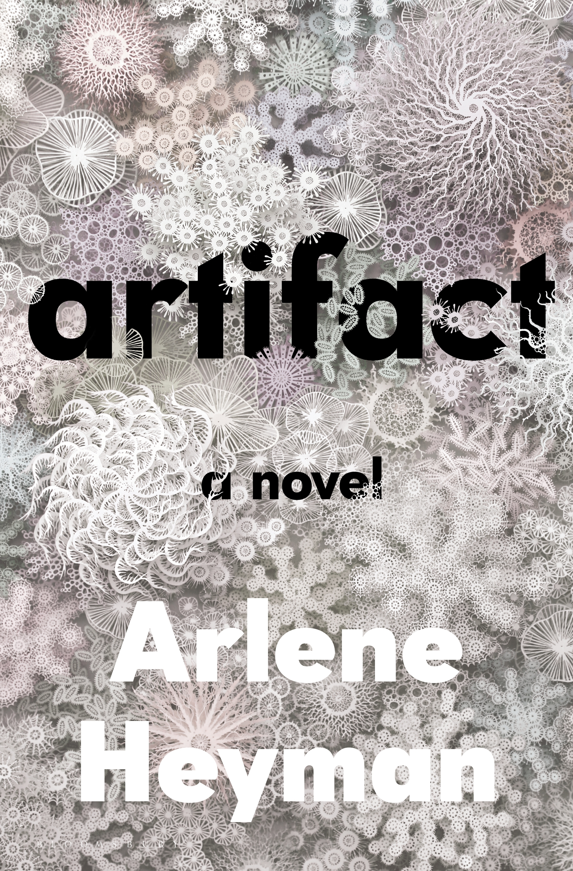 Virtual Book Launch: Artifact by Arlene Heyman in conversation with Sandra Newman