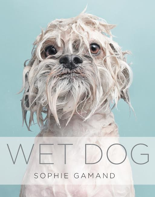 Book Launch: Wet Dog by Sophie Gamand