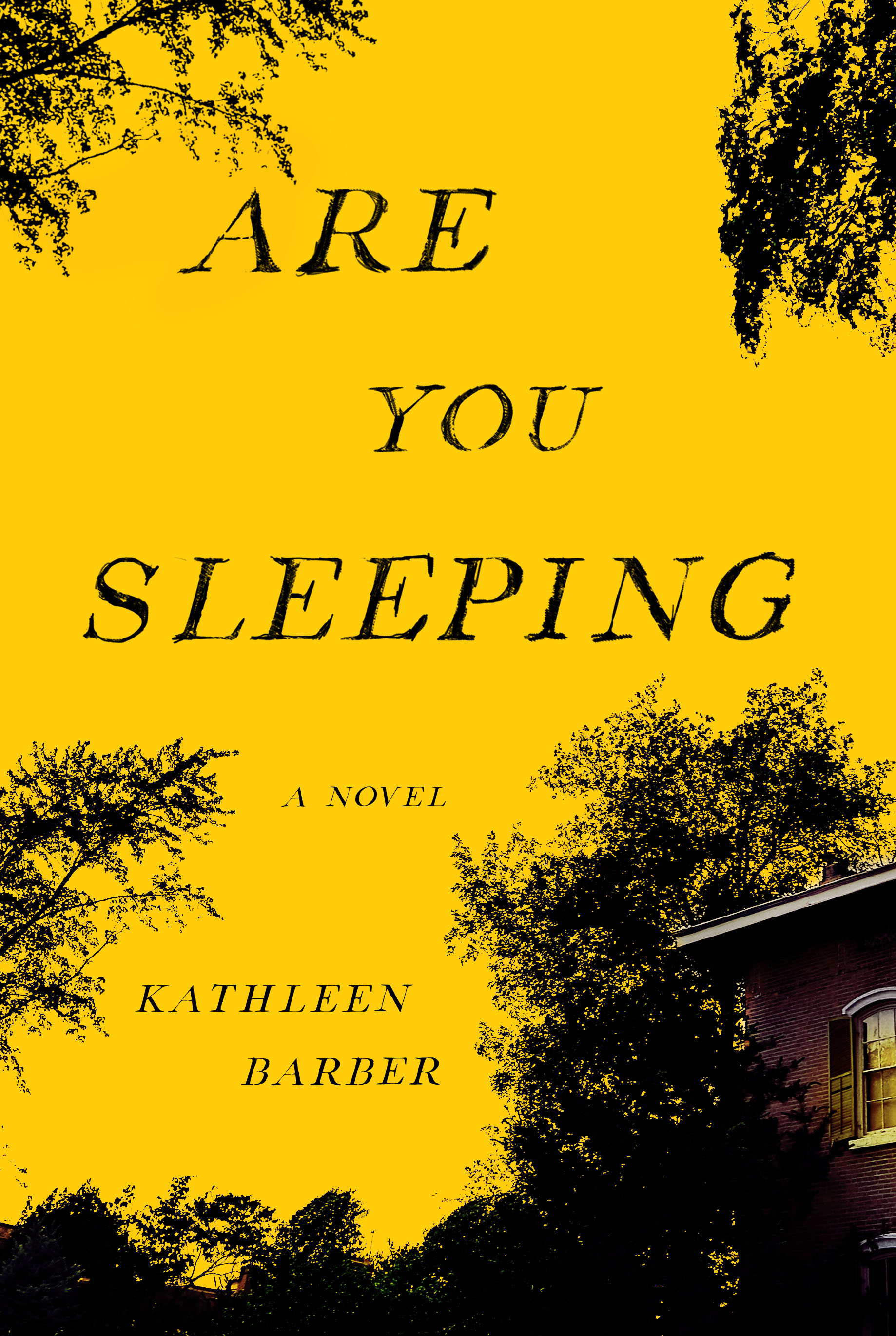 Book Launch: Are You Sleeping by Kathleen Barber
