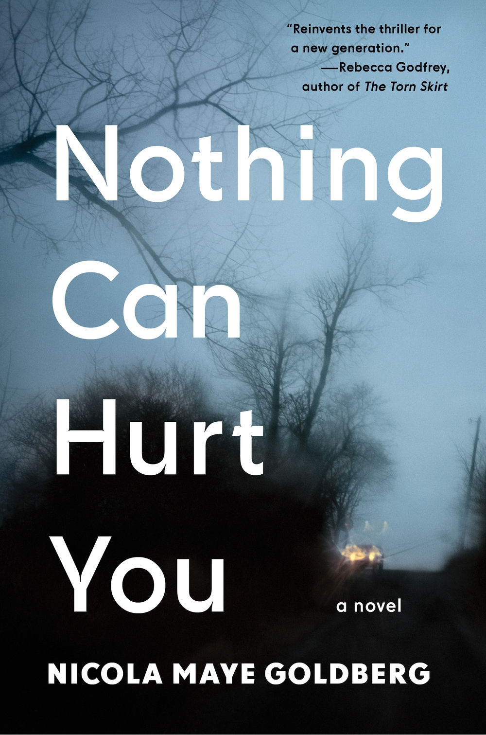 Virtual Book Launch: Nothing Can Hurt You by Nicola Maye Goldberg in conversation with Rebecca Godfrey