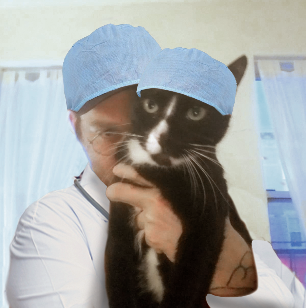 Nick and cat doctors